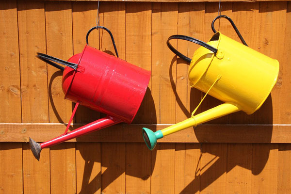 watering-can-848223_1280